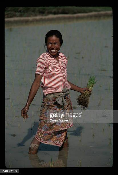 Laughing Woman Planting Rice in Field