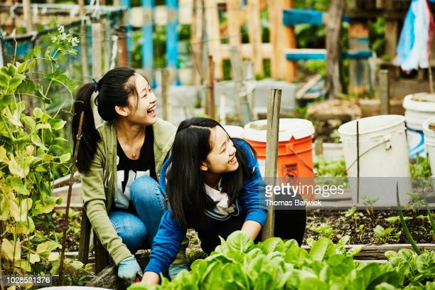 Laughing young women volunteering in community garden