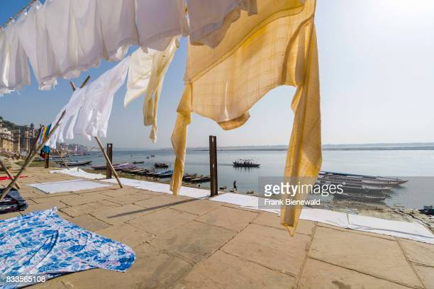Laundry is washed and put to dry by the Dhobi caste at Pandey Ghat at the holy river Ganges in the suburb Godowlia