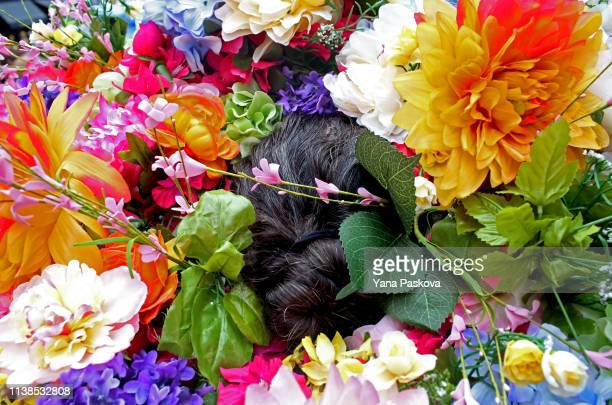 Laura Bopp wears a homemade flower hat in Midtown East for the annual Easter Parade on April 21 2019 in New York City Each year New Yorkers put on...