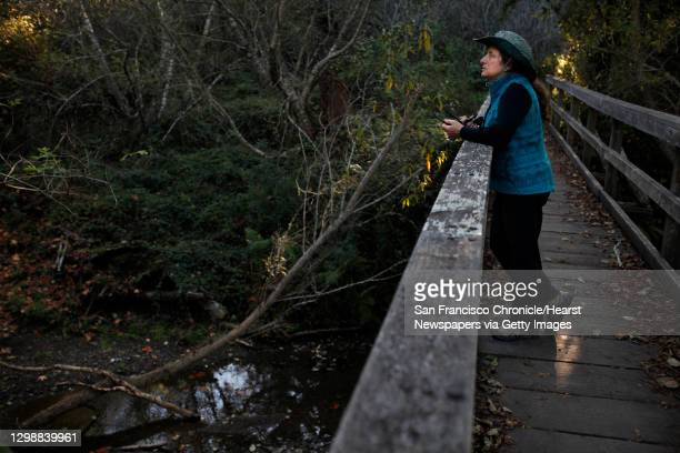 Laura Chariton, Director of the Watershed Alliance of Marin, a 501c3 project of Marin Link stands on a bridge over Redwood Creek where the endangered...
