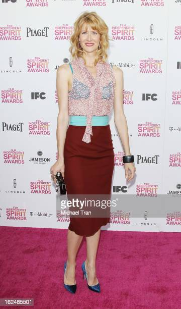 Laura Dern arrives at the 2013 Film Independent Spirit Awards held on February 23, 2013 in Santa Monica, California.