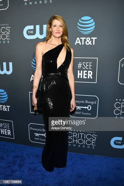 Laura Dern at Claire Foy Accepts The #SeeHer Award At The 24th Annual Critics' Choice Awards The Barker Hanger on January 13 2019 in Santa Monica...