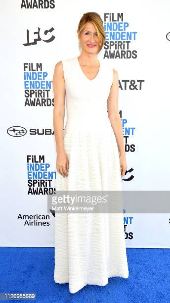 Laura Dern attends the 2019 Film Independent Spirit Awards on February 23 2019 in Santa Monica California