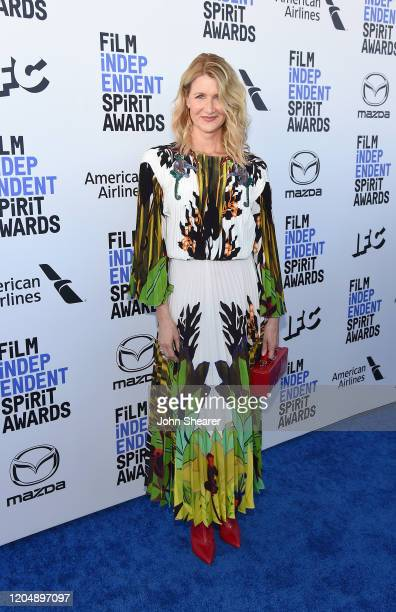 Laura Dern attends the 2020 Film Independent Spirit Awards on February 08, 2020 in Santa Monica, California.