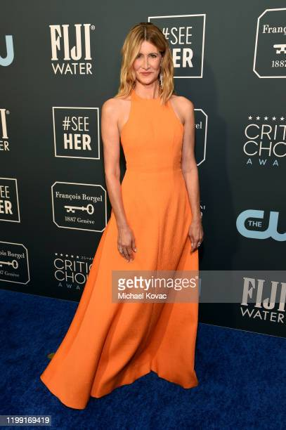 Laura Dern attends the 25th annual Critics' Choice Awards at Barker Hangar on January 12, 2020 in Santa Monica, California.