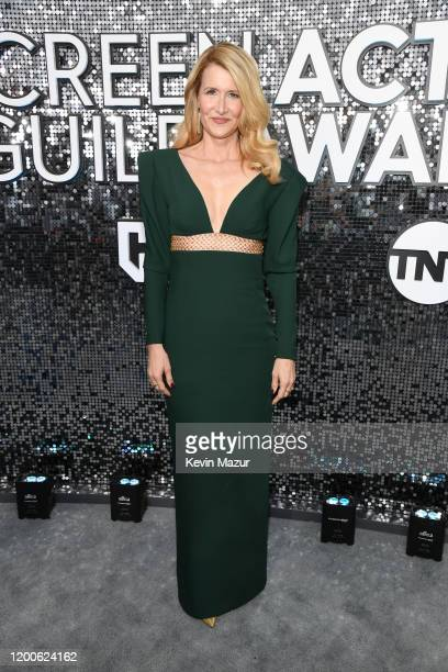 Laura Dern attends the 26th Annual Screen Actors Guild Awards at The Shrine Auditorium on January 19 2020 in Los Angeles California 721336