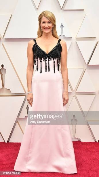 Laura Dern attends the 92nd Annual Academy Awards at Hollywood and Highland on February 09 2020 in Hollywood California