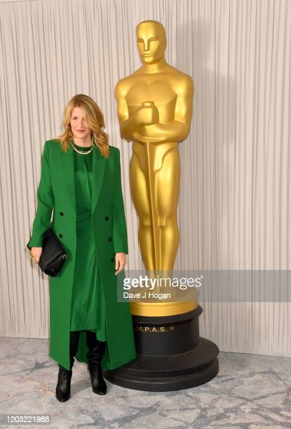 Laura Dern attends the Academy Nominees Reception 2020 at The Biltmore on January 31 2020 in London England