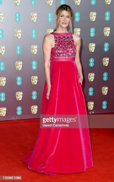 Laura Dern attends the EE British Academy Film Awards 2020 at Royal Albert Hall on February 02, 2020 in London, England.
