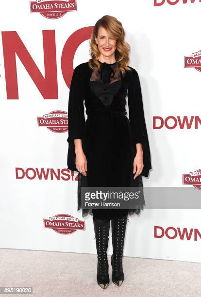 Laura Dern attends the Los Angeles Special Screening of 'Downsizing' at The Regency Village Theatre on December 18 2017 in Westwood CA