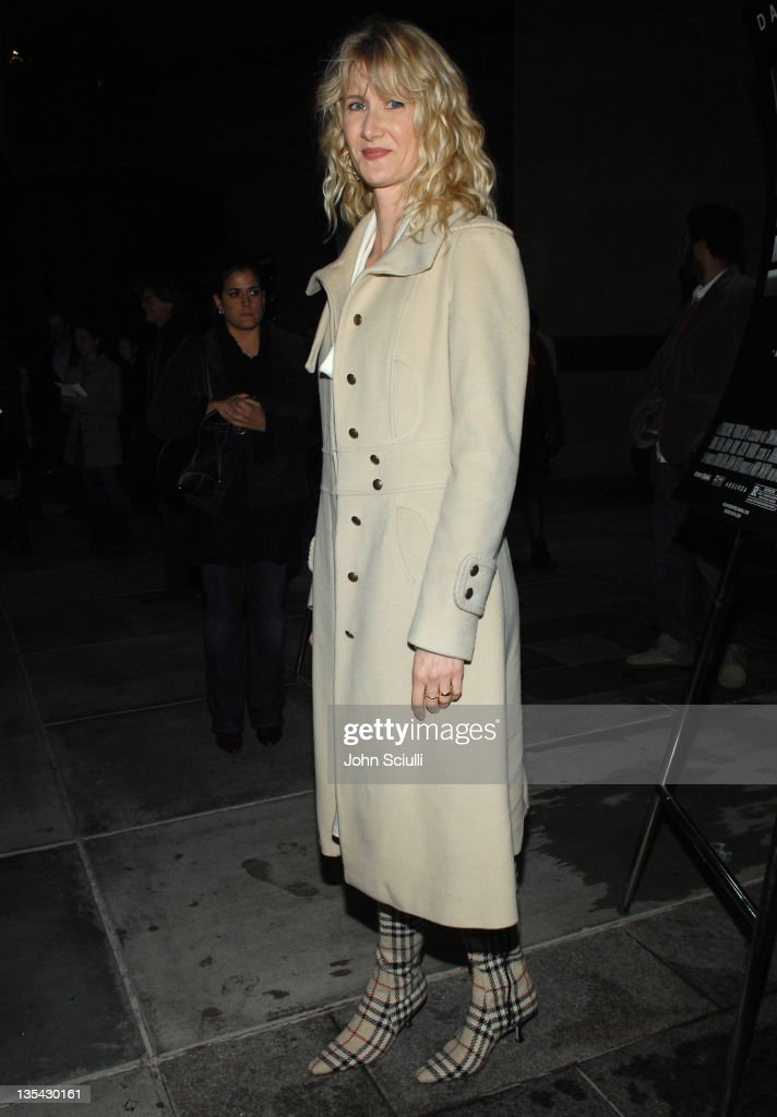 Laura Dern during 'Inland Empire' Los Angeles Premiere - Red Carpet and Q&A at Bing Theater at LACMA Museum in Los Angeles, California, United States.