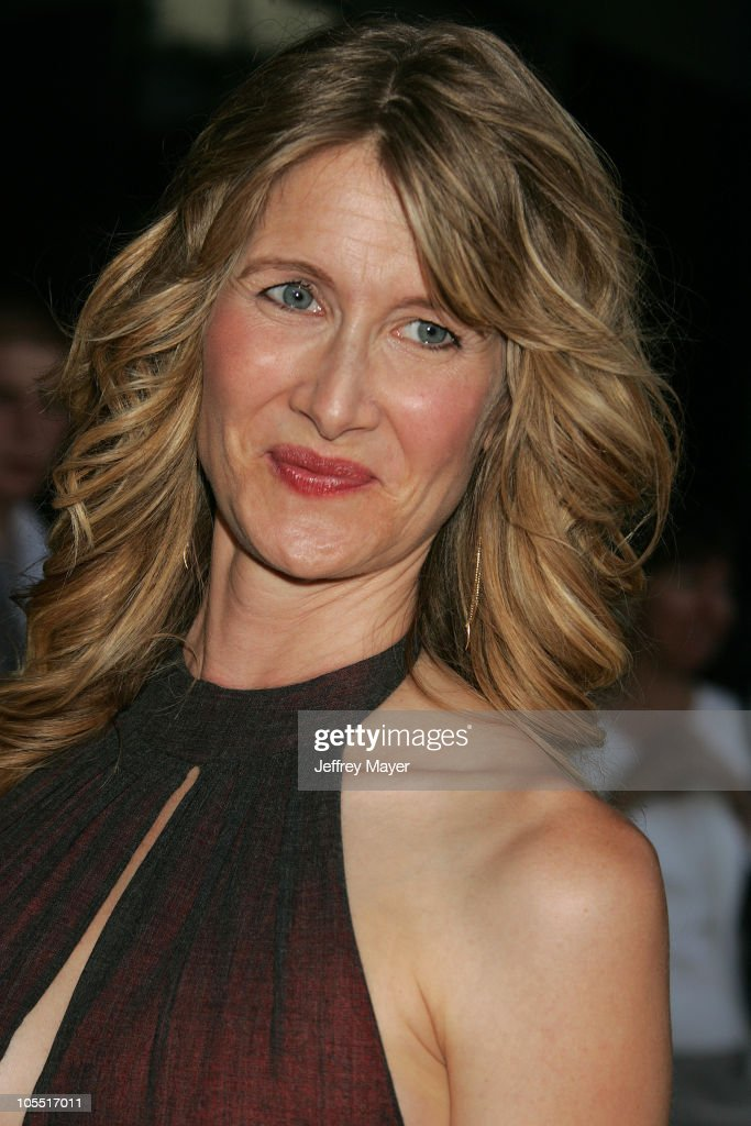 Laura Dern during 'We Don't Live Here Anymore' Los Angeles Premiere - Arrivals at Director's Guild of America in Hollywood, California, United States.