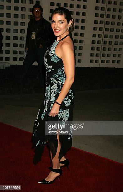 Laura Elena Harring during 2004 AFI Film Festival William Shakespeare's 'The Merchant of Venice' Arrivals at Cinerama Dome in Hollywood California...