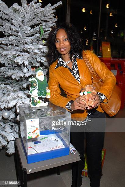 Laura Flessel during The Peres Noel Verts Celebrate Their 30th Anniversary Auction and Cocktail Party December 5 2006 at Centre Georges Pompidou in...