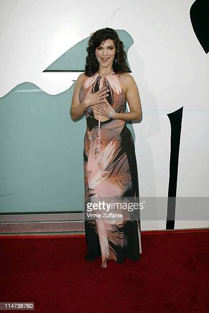 """Laura Harring attending the premiere of """"The Punisher"""" at the Archlight Theatre in Hollywood, California 04/10/04"""