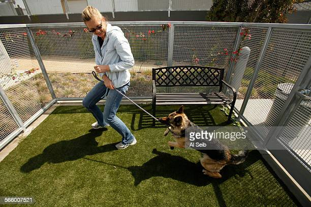 """Lauralea Oliver walks """"Elaine"""" the German Shepard while looking at the dogs in the new South Los Angeles Animal Services Chesterfield Square facility..."""