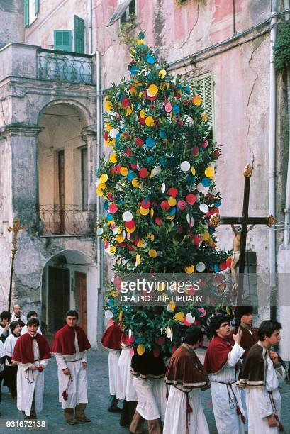 Laurel tree decorated with coloured communionwafers St Sebastian's Day procession Camporosso Liguria Italy