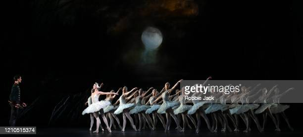 Lauren Cuthbertson as Odette/Odile and William Bracewell as Prince Siegfried with artists of the company in The Royal Ballet's production of Lev...