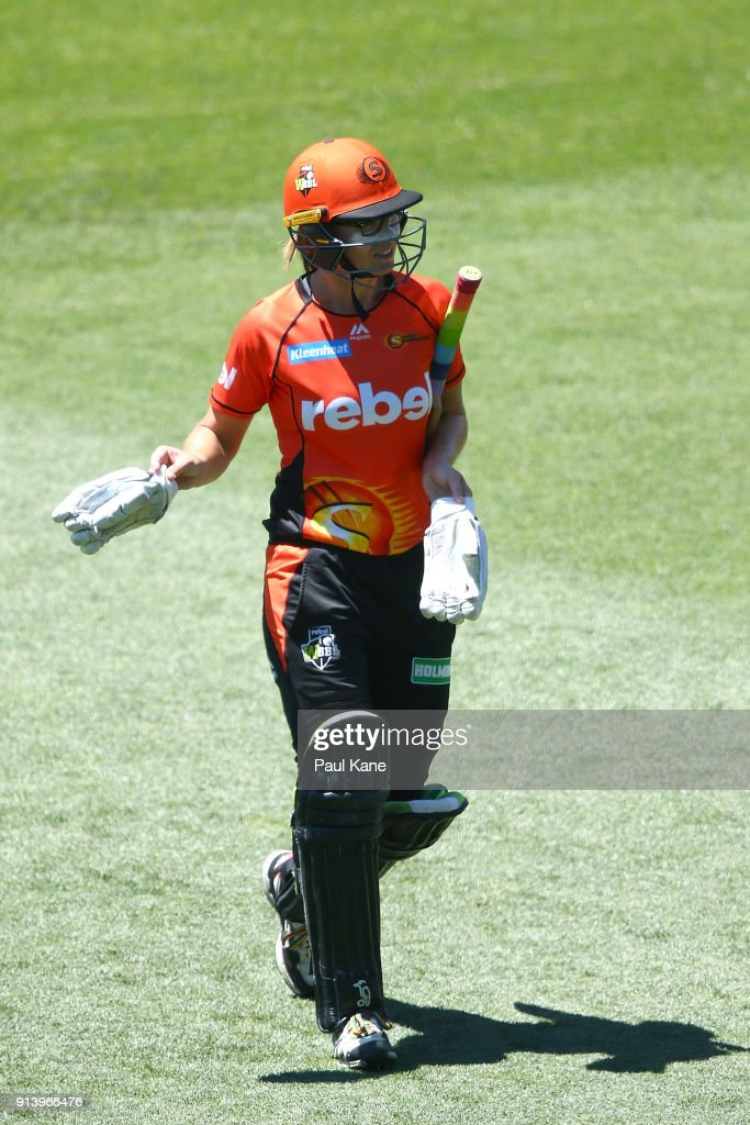 WBBL Final - Sixers v Scorchers
