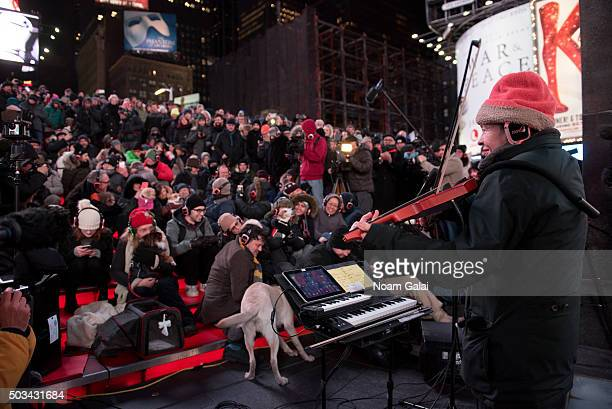Laurie Anderson performs at the January Midnight Moment concert for dogs Heart Of a Dog by Laurie Anderson at Duffy Square on January 4 2016 in New...
