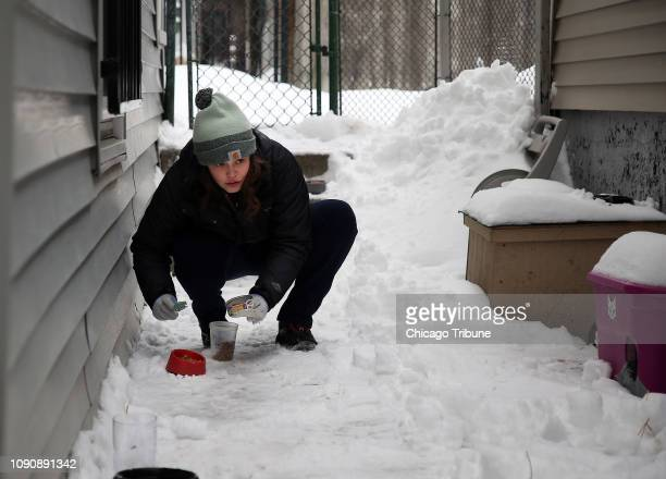 Laurie Maxwell of PAWS Chicago feeds and shelters feral cats near her Chicago home where she is seen putting out food on Monday Jan 28 2019