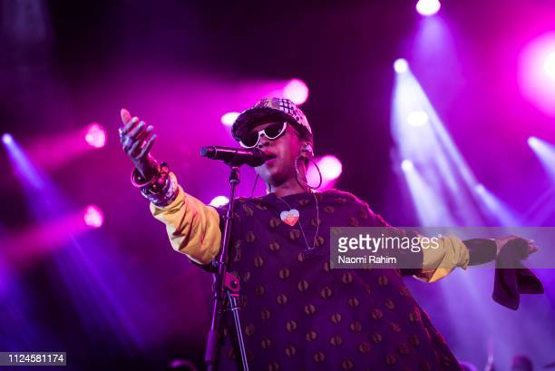 Lauryn Hill performs at Sidney Myer Music Bowl on February 13 2019 in Melbourne Australia