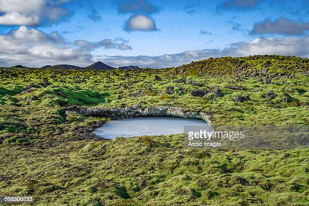 lava and moss landscape, iceland - waterhole stock pictures, royalty-free photos & images