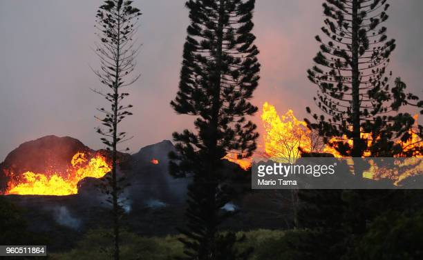 Lava from a Kilauea volcano fissure erupts at dawn on Hawaii's Big Island on May 20 2018 in Kapoho Hawaii The US Geological Survey said the volcano...