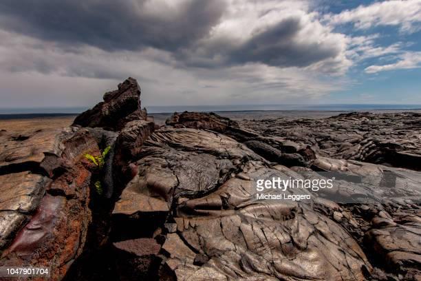lava hawaii - パホア ストックフォトと画像