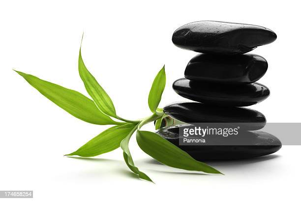 Lava Stones with Bamboo (clipping path)