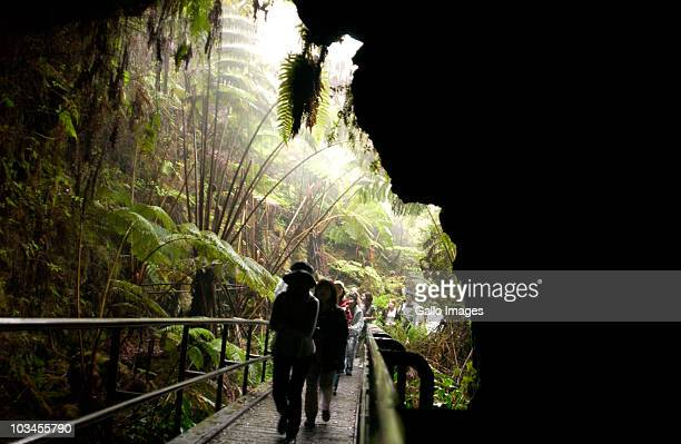 lava tube, hawaii volcanoes national park, big island, hawaii, usa - hawaii volcanoes national park stock pictures, royalty-free photos & images