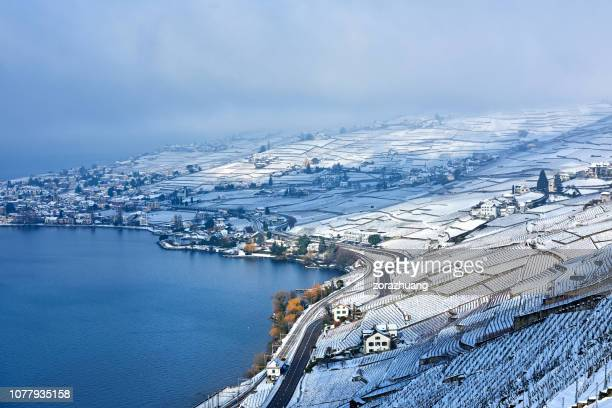 lavaux vineyards at winter sunrise, switzerland - lausanne stock pictures, royalty-free photos & images
