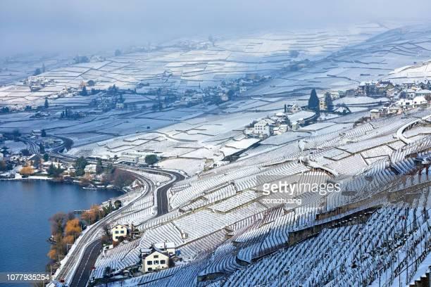 冬の日の出、スイス連邦共和国でラヴォー ヴィンヤーズ - ヴォー州 ストックフォトと画像