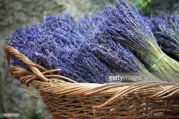 Lavender bouquets in a basket