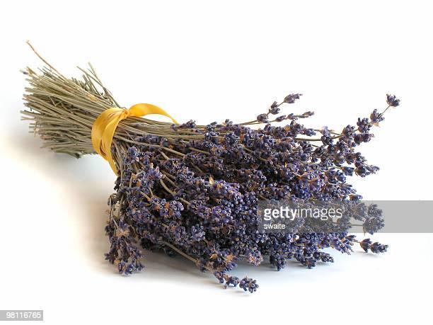 lavender bundle - bundle stock pictures, royalty-free photos & images