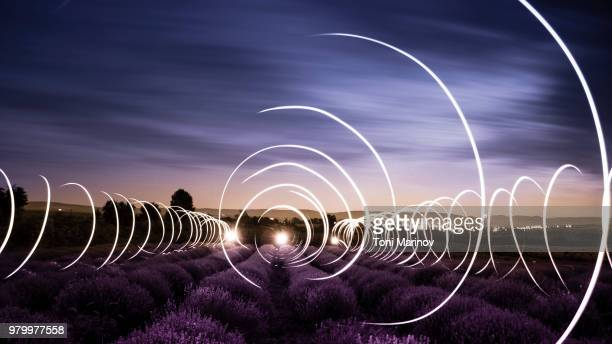 lavender field at night - lichtmalerei stock-fotos und bilder