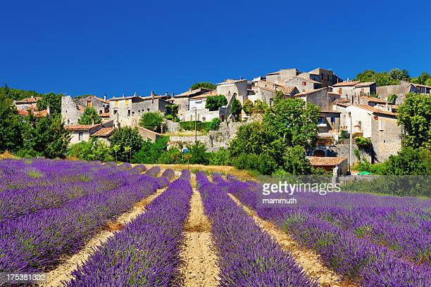 lavender field with a small town in provence - franse cultuur stockfoto's en -beelden
