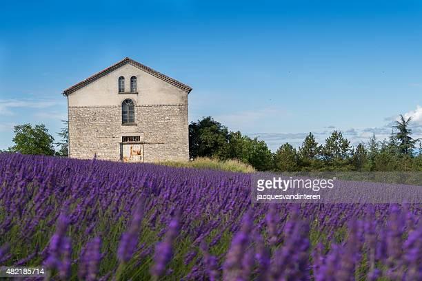 ラベンダー畑、bulding ワインの共同 - ガール県 ストックフォトと画像