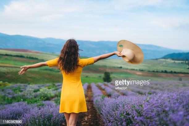 ラベンダーの幸せ - lavender color ストックフォトと画像