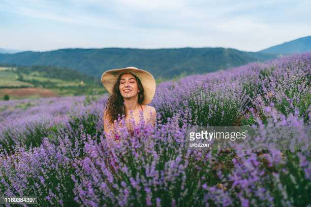 felicità lavanda - lavender color foto e immagini stock