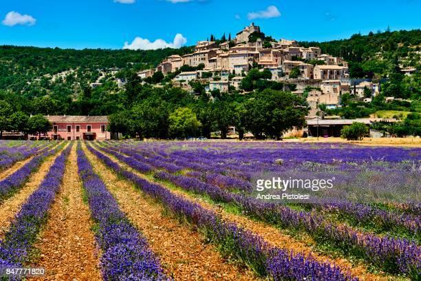 lavender in simiane la rotonde village, provence - アルプドオートプロバンス県 ストックフォトと画像