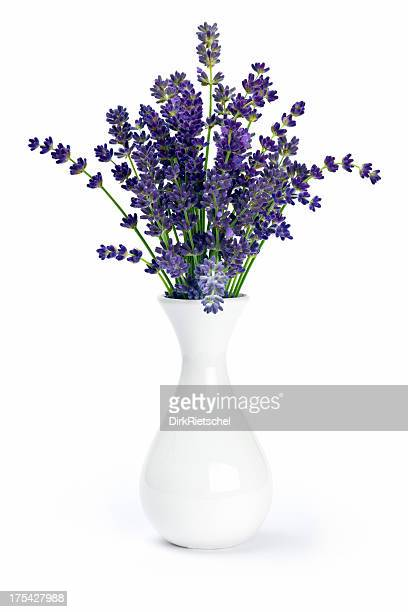 lavender in vase. - vase stock pictures, royalty-free photos & images