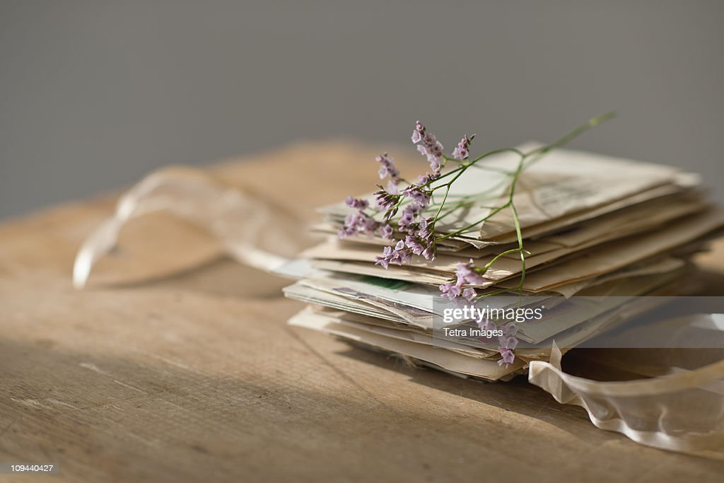 Lavender stem on stack of letters : Stock Photo