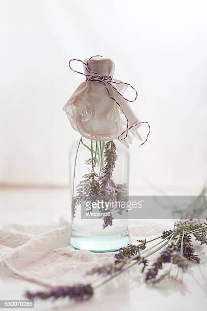 Lavender vinegar, lavender blossoms with white wine vinegar