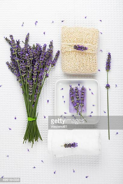 Lavender (Lavendula), white towel, lavender soap on soap basket and cactus fibre sponge