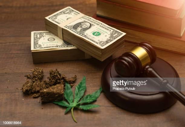 a law book with a gavel - drug law - légalisation photos et images de collection