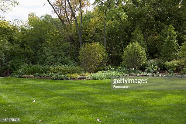 Lawn and flower bed with rock edging