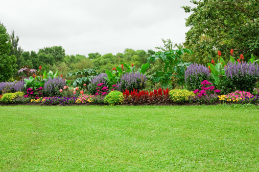 Lawn and Formal Garden 157672314
