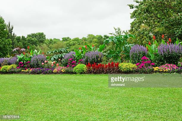 lawn and formal garden - domestic garden stock pictures, royalty-free photos & images